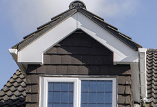 Beautiful Fascias